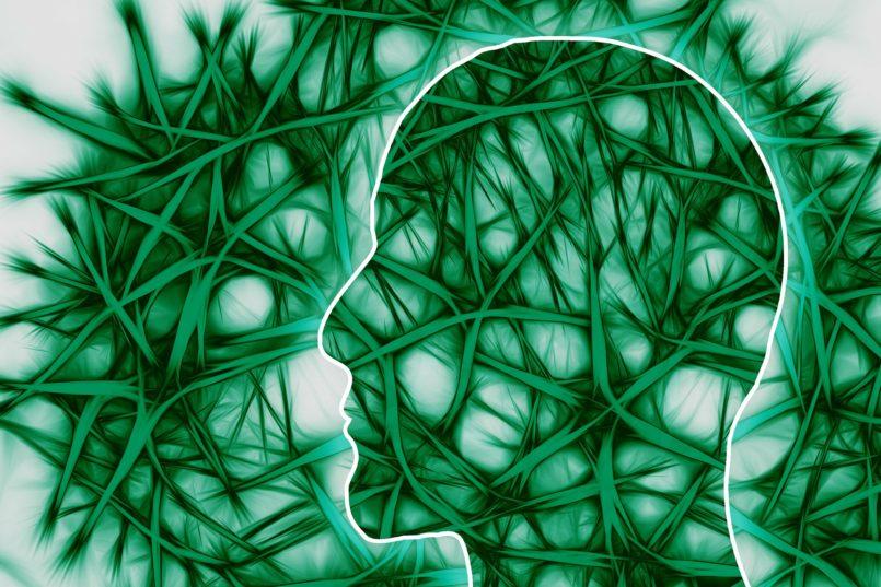 neuropsicologia-cervello
